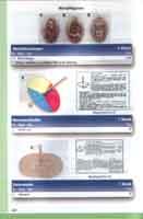 Страница 620 Katalog Spielzeug aus dem Ei - 2007 - Fantasia Verlag GmbH - Dreieich.